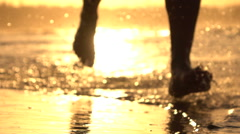 SLOW MOTION: Young man jogging in shallow ocean water at stunning orange sunset Stock Footage