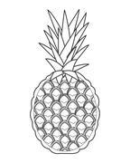 whole pinapple icon - stock illustration