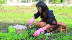 Asian woman home gardening working Stock Footage