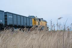 Locomotive of a freight train I the field - stock photo