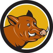 Wild Boar Razorback Head Startled Circle Cartoon Stock Illustration
