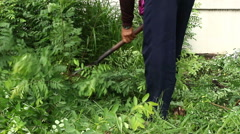 Cutting grass with knife Stock Footage