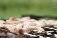 Preparing pork shashlik on brazier on the countryside Stock Photos