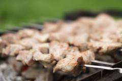preparing pork shashlik on brazier on the countryside - stock photo