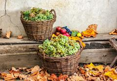 autumnal still life with fruit and leaves on a wooden base - stock photo