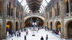 People visit Natural History Museum in London, United Kingdom Stock Footage