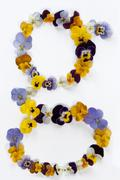 Letter g alphabet made from pansy flowers Stock Photos