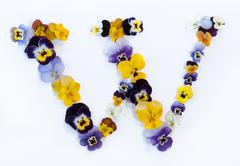 Letter W alphabet made from pansy flowers Stock Photos