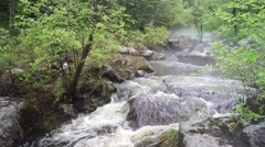 Rapid stream of forest river in Heilongjiang (China) Stock Footage