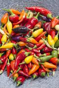 Hot peppers in wok pan Stock Photos