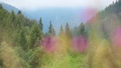 Fog over the Carpathian Mountains Stock Footage