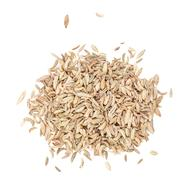 Fennel seeds isolated Stock Photos