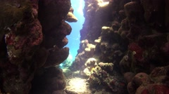 Diver Swim Through Underwater Cave Stock Footage
