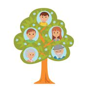 Cartoon generation family tree in flat style grandparents parents and child Stock Illustration