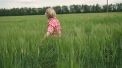 Young, beautiful girl whirl, raising his hands on the green, spring wheat field - stock footage