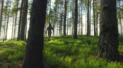 Young Female running among trees in  forest. Slow motion footage. Amazing sun - stock footage