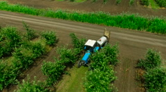 Aerial view of the Sprayer for Applying Fungicides in the Apple Orchard. Stock Footage