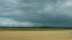 WIDE FIXED shot of rain clouds flying away from the camera over the wheat field Stock Footage