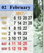 Calendar for February 2017 with winter pines Stock Illustration