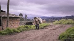 Senior peasant walking in countryside Stock Footage