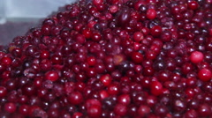 Frozen red cranberries Stock Footage