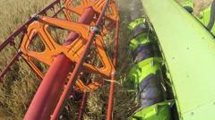 Combine harvester close up. Combine harvester harvesting wheat. Grain harvesting Stock Footage