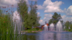 Green grass spike on lake bank. Nature landscape. Closeup of green grass spikes - stock footage