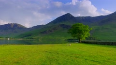 Sunset over the pasture near the lake in the lake district, England Stock Footage