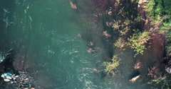 4k UHD aerial view. Low flight over fresh cold mountain river at sunny summer Stock Footage
