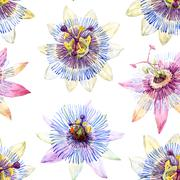Watercolor passion flower pattern - stock illustration