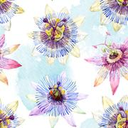 Watercolor passion flower pattern Stock Illustration
