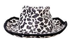 Headdress, cowboy hat Stock Photos
