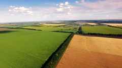 Aerial view of agrarian fields. Stock Footage