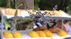 Lavender Festival Street Fair Stock Footage