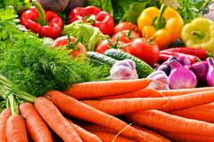 Composition with variety of fresh organic vegetables. Stock Photos