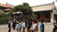 People walk by the territory of the Yonghe temple in Beijing, China. Stock Footage
