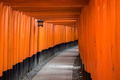 Red Torii of Fushimi Inari Shrine, Kyoto, Japan - stock photo