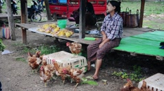 Women selling chicken on the local five day market in Loikaw Stock Footage
