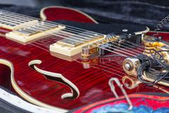 Neck electric guitar in a case close-up. Music Stock Photos