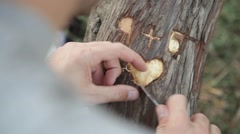Heart Shape Tree Carving Stock Footage