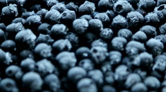 Frozen blueberries with frost Stock Footage