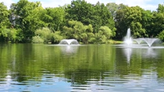 Fountains in the pond with green trees. Summer park outdoors. Stock Footage