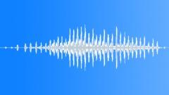 Water bird loud twirl - sound effect