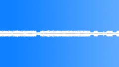 Crickets on field loop Sound Effect