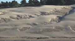 Wind blowing sand on the dunes along the Oregon Siuslaw River Arkistovideo