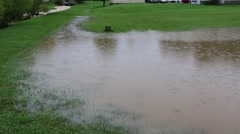 Residential Yard Covered with Floodwaters Stock Footage