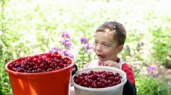 Happy boy treats freshly picked cherries Stock Footage