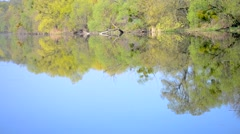 Flat surface of water reflected trees on the shore Stock Footage