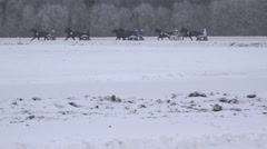 Fast running race horses with wheel cart rider on hippodrome in winter time. 4K Stock Footage