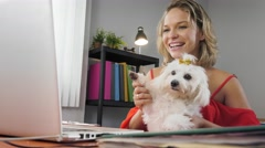 2-Business Woman Holding Dog During Skype Conference Call - stock footage
